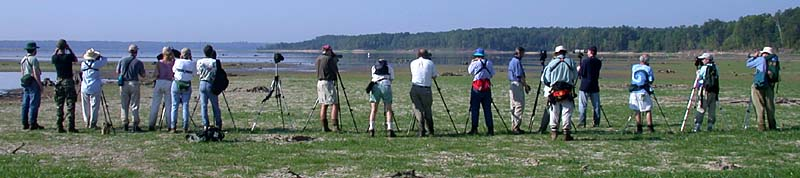Morgan Creek mudflats field trip, 8/3/02